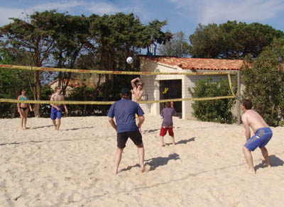 volleyball_hy