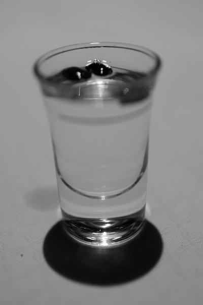 spinoutsoelden2008-6961